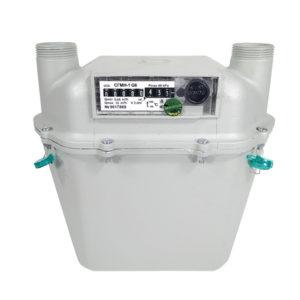 Счётчик газовый СГМН-1 G6 200